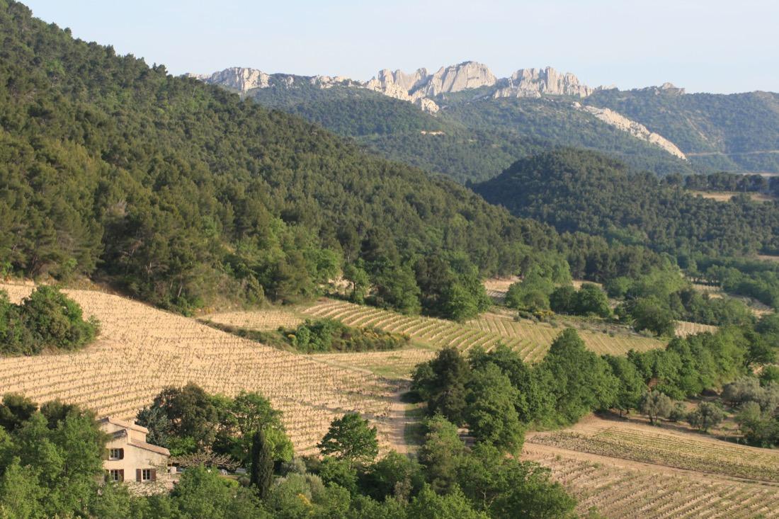 vita viner från Rhônedalen