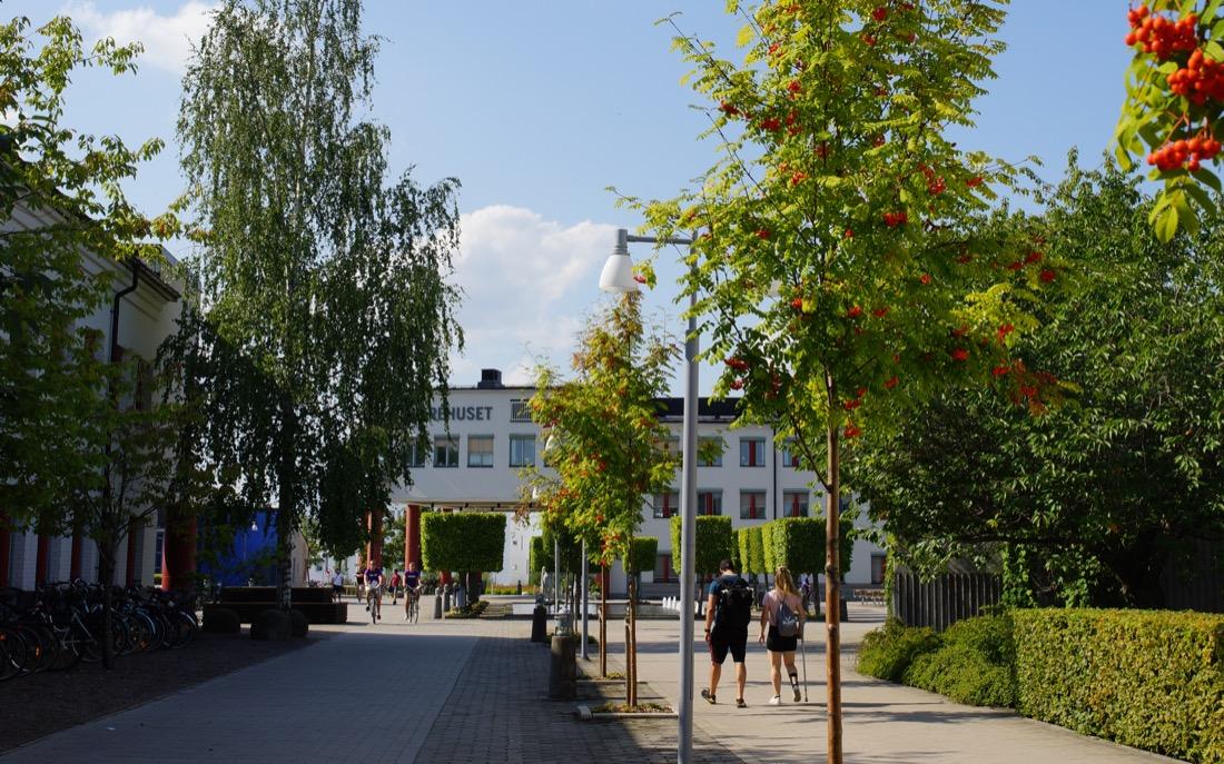 forskning i Örebro